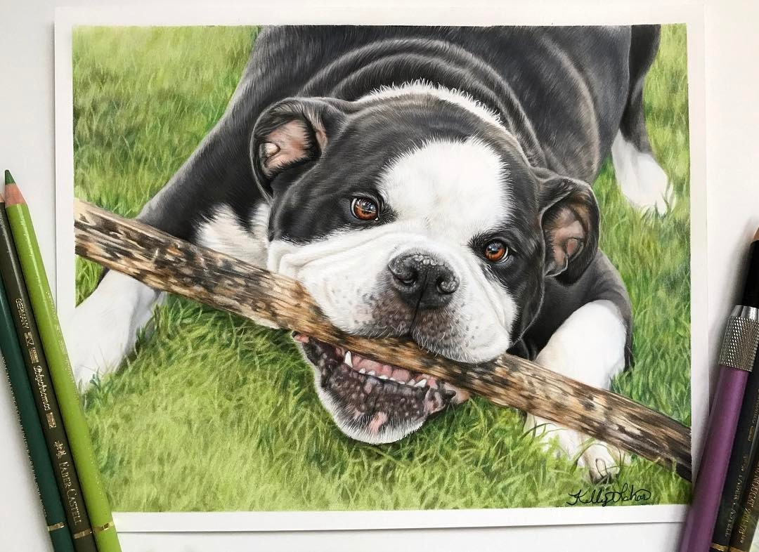 01-Buster-Kelly-Lahar-Realism-with-Animal-Portrait-Drawings-www-designstack-co