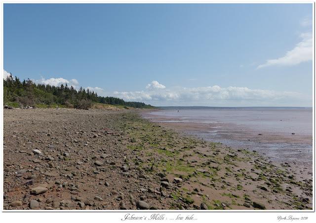 Johnson's Mills: ... low tide...