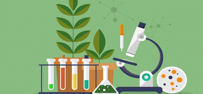 Danh mục tạp chí khoa học được tính điểm Hội đồng ngành Sinh học 2019