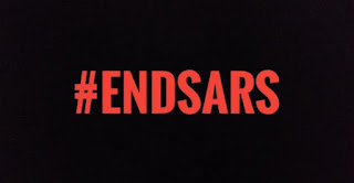Why #EndSars Campaign Alone won't do the Magic