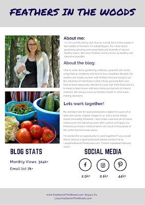 Natural blogger media kit