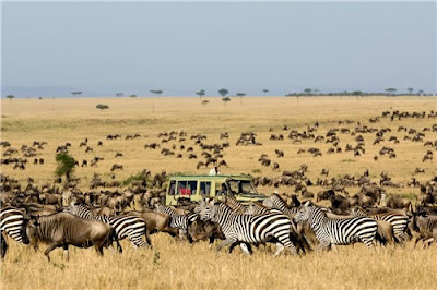 African Safari for a Great Cause !!