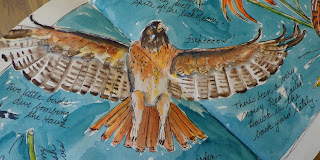 http://possumpatty.blogspot.com/2016/07/on-my-mind-theres-been-noisy-red-tailed.html