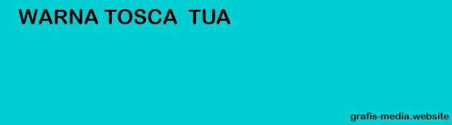 Pengertian Warna Hijau Tosca Beserta Contohnya GRAFIS