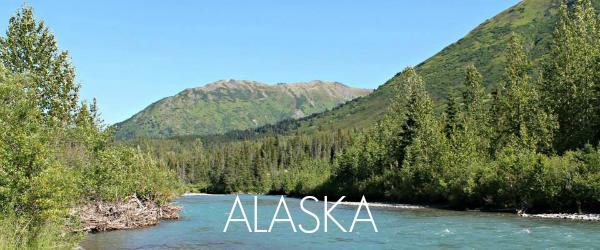 http://www.awayshewentblog.com/2014/07/travel-tuesday-alaska.html