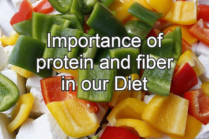 importance of protein and fiber