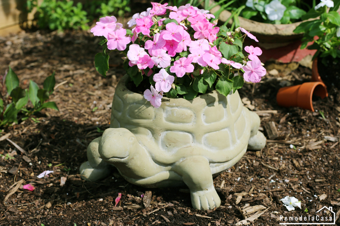 Turtle planter with pink flowers in it