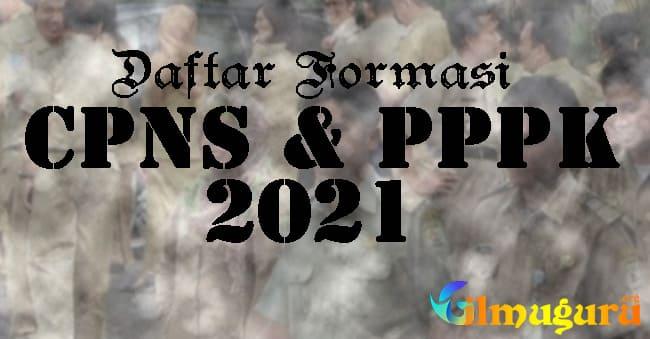 Lengkap Formasi CPNS dan PPPK Se Indonesia