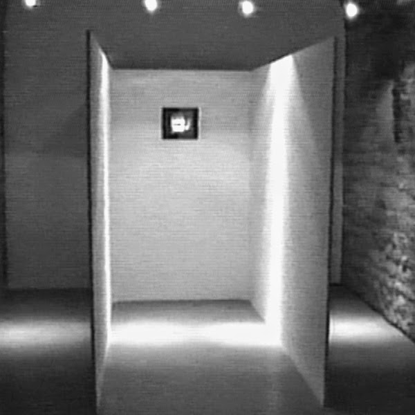 http://germainhuby.blogspot.fr/p/moment-2-installation-video-1996-un.html
