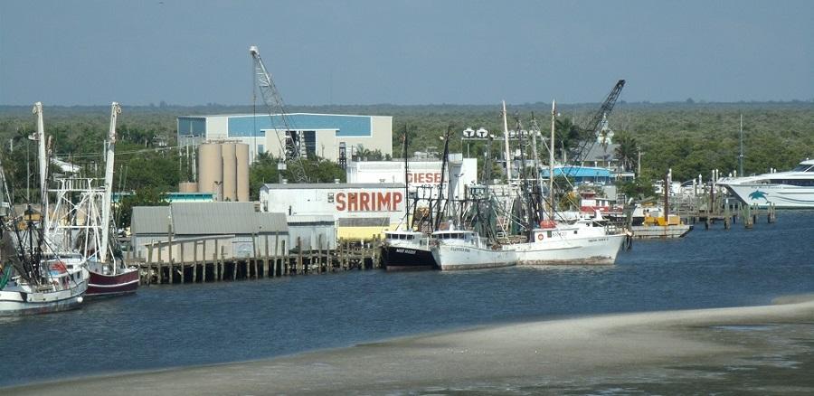 Marinas y barcos de pesca comercial