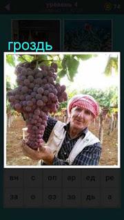 женщина садовод в руках держит огромную гроздь винограда 667 слов 4 уровень
