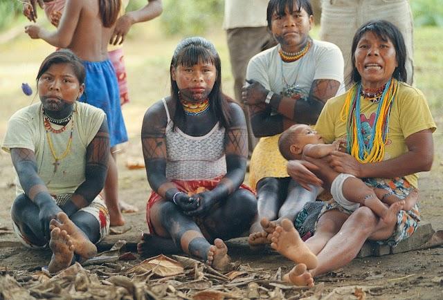 Grupos armados vulneran derechos humanos de emberas