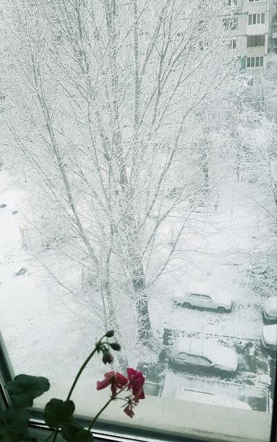 за окном - первый снег...