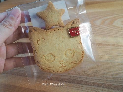 フロール、猫のクッキー