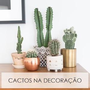 DECORANDO | 15 ideias para você usar cactos na decoração