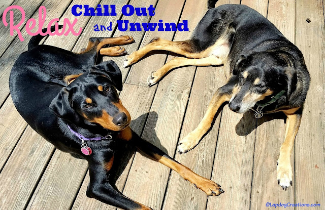 Relax... Chill Out and Unwind - Words of Advice from Two Wise Dogs #RescueDog #Doberman #HoundMix #AdoptDontShop #DogInspiration ©LapdogCreations