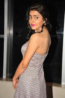 Actress Avantika  Stills in Long Dress at Meeku Meere Maaku Meeme Audio Launch  0012