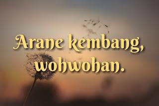 Alternative arane kembang, pentil, wohwohan