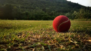 Cricket Facts in Hindi