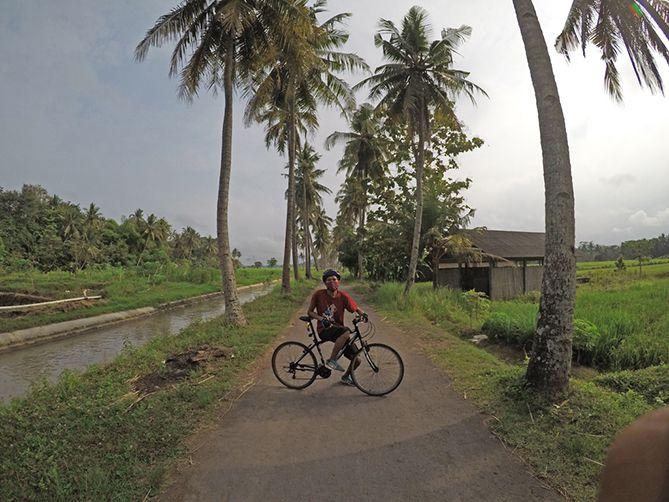 Berfoto di spot foto pohon kelapa Moyudan