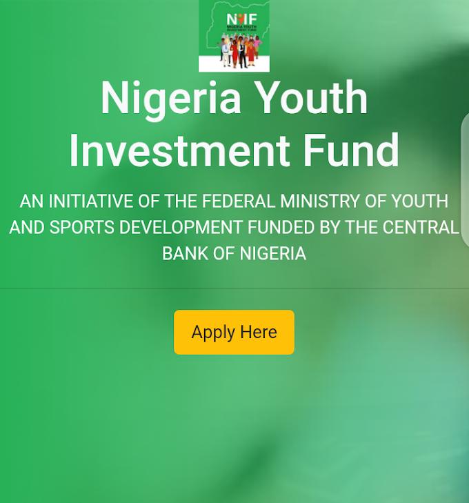 Samu tallafi daga Nigerian youth investment fund