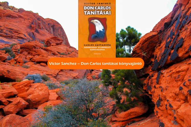 Victor Sanchez - Don Carlos tanításai könyvajánló