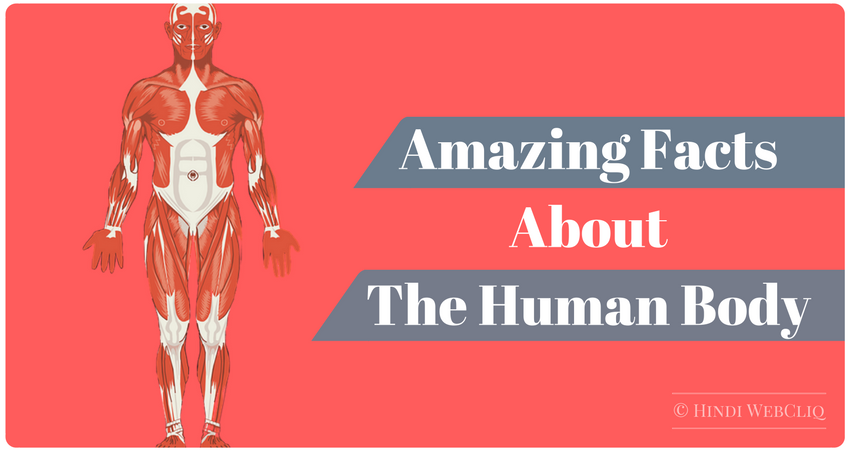 amazing-facts-about-human-body-in-hindi