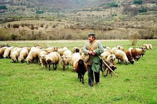 Μέτρα για το ζωικό κεφάλαιο ζητούν στην Μεσσηνία