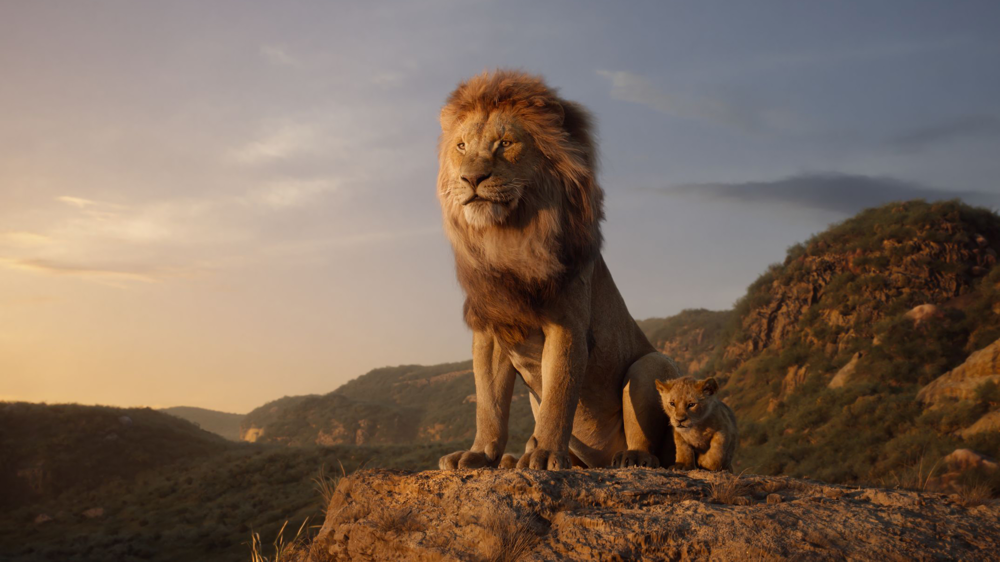 The Lion King 2019 Mufasa Simba 4k Wallpaper 18