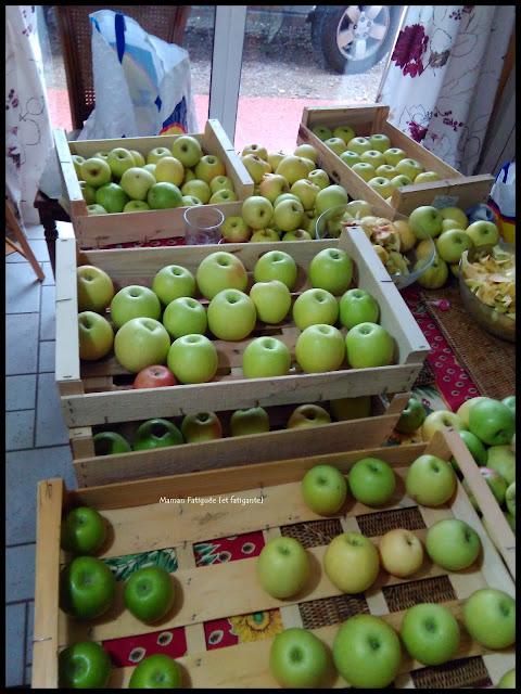 tri de pommes