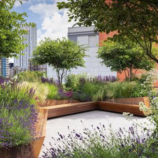 Jardín corporativo en una azotea de Londres convertido en un paraíso para las abejas y otros polinizadores
