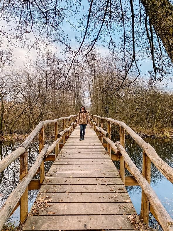 Il canneto nell'oasi del lago di Sartirana