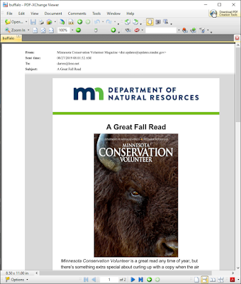 Image of a PDF file created from a html .msg Outlook email with PstViewer Lite, showing a buffalo.
