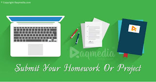 eClass, homework, homework help, Homework Samples, Options