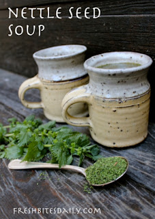 Nettle Seed Soup For Nutrition
