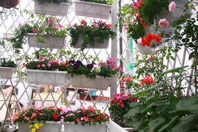 buôn bán hoa