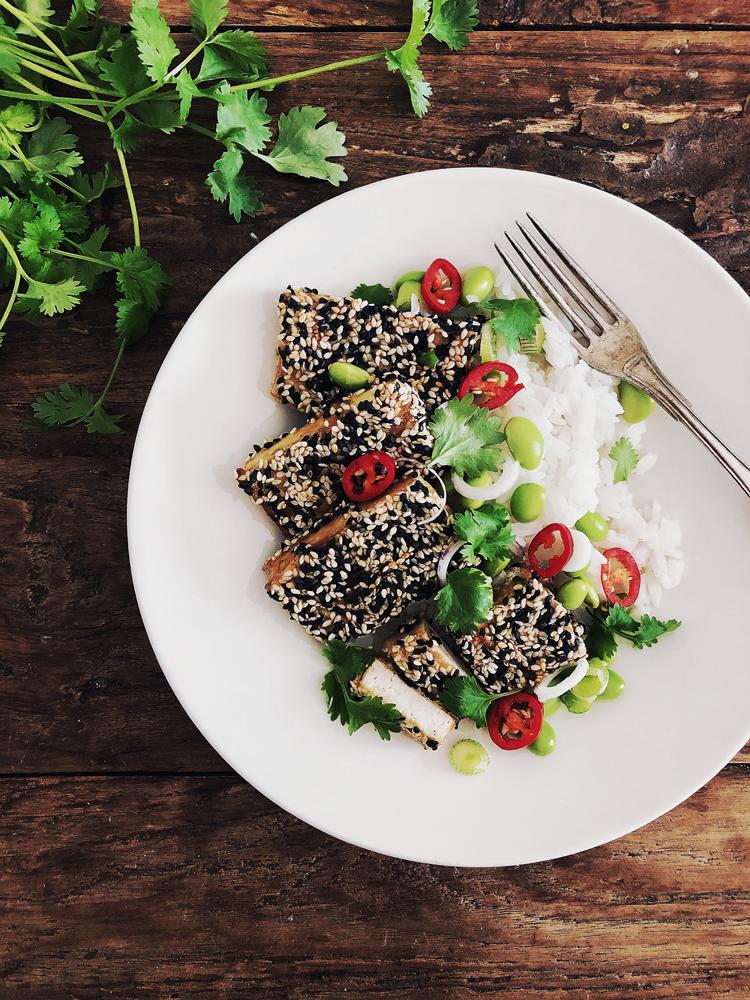seesamipaneroitua tofua, riisiä ja teriyakikastiketta