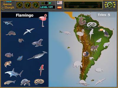 Животните на Южна Америка Пъзел