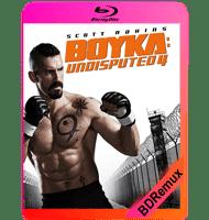 BOYKA: INVICTO 4 (2016) BDREMUX 1080P MKV ESPAÑOL LATINO