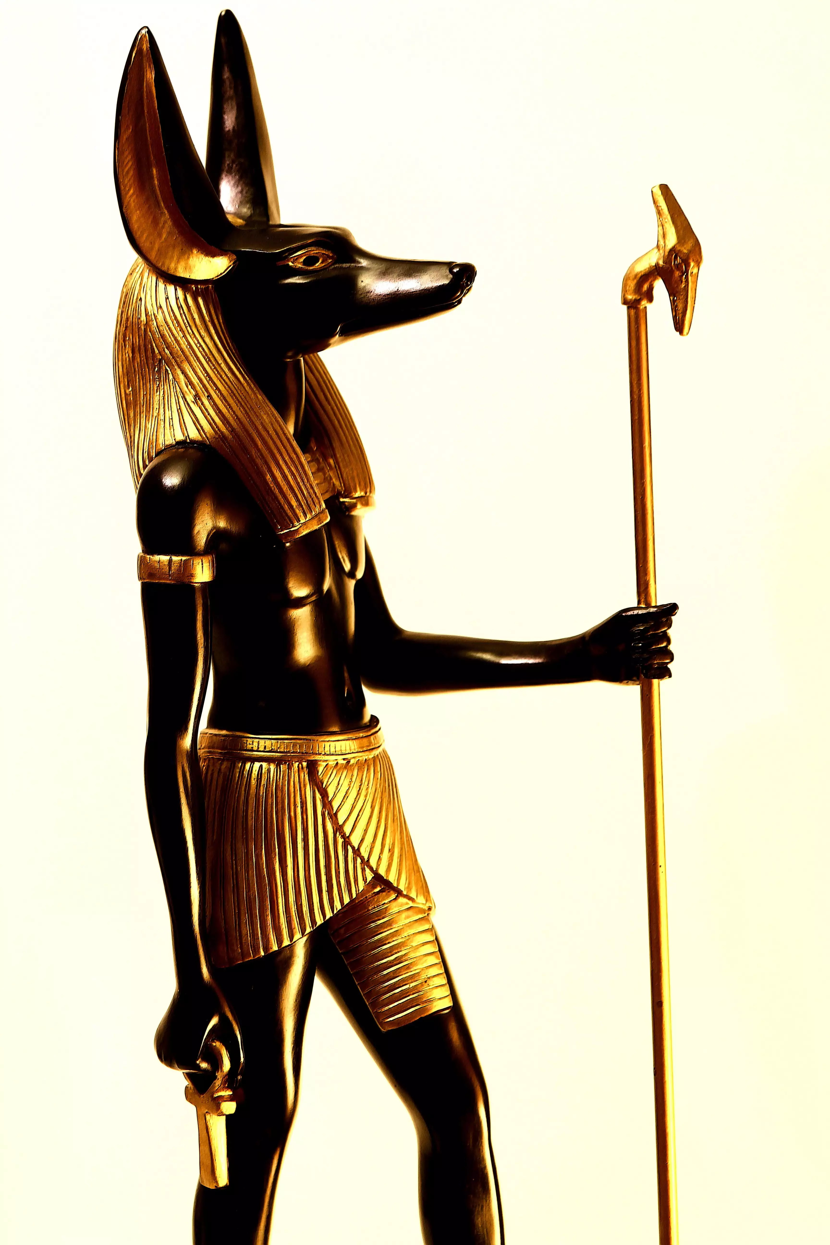 anubis dios de la muerte, chacal egipcio, anubis egipto, anubis dios