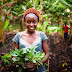 USAID awards $500,000 co-investment grant to boost agric in Nigeria