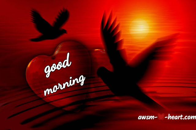Hd good morning love pic