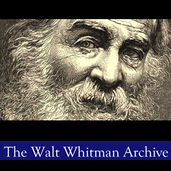 the life and writings of walt whitman Walter walt whitman (may 31, 1819 – march 26, 1892) was born in long island, new york and is regarded as a american poet, essayist and journalist his core specialty lies in poetry and is regarded as one of the chieftains in american poetic cult and father of free verse.