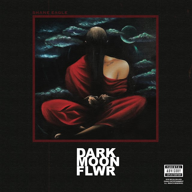 "Shane Eagle Enlists Bas, Nasty C For ""Dark Moon Flower"" Mixtape"