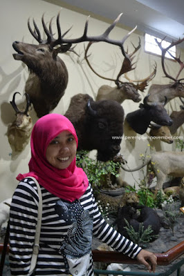Rahmat International Wildlife Museum & Gallery wisata medan