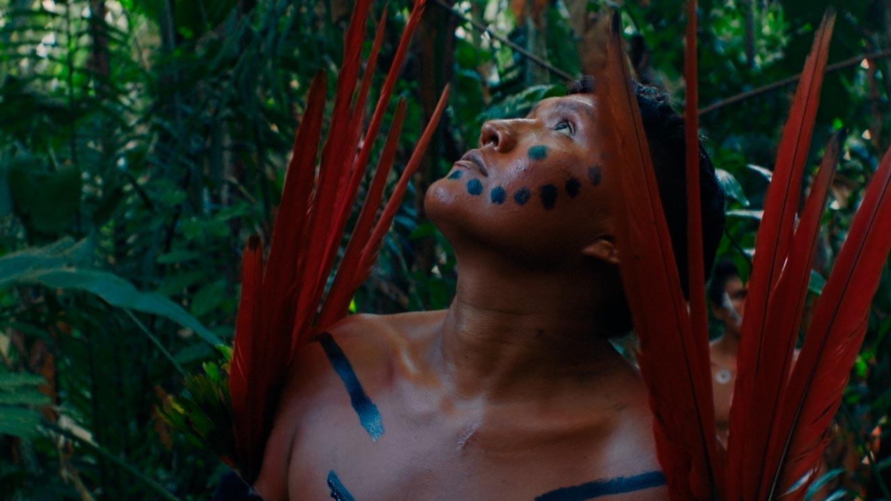 Mostra Ecofalante de Cinema tem como tema a Semana do Meio Ambiente: Especial Amazônia