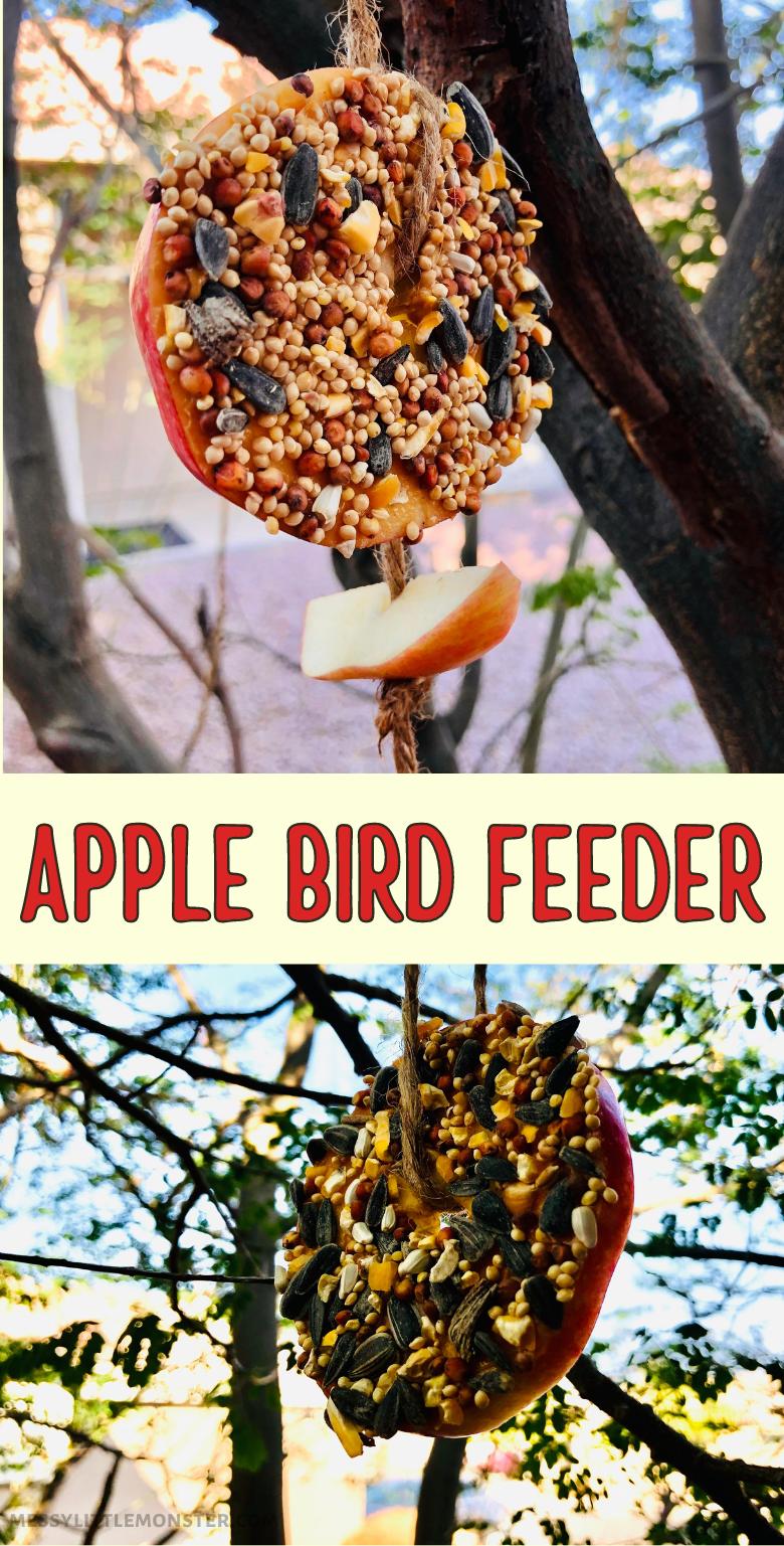 Apple bird feeder. Easy homemade bird feeder for kids to make.