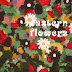 Sven Wunder - Eastern Flowers Music Album Reviews