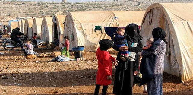 Sejumlah Pengungsi Suriah Diserang Wabah Parasit Pemakan Daging