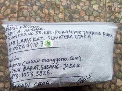 Benih Padi Pesanan   ABDUL RAHMAN Langkat, Sumut.     (Setelah di Packing).